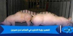 تفسير رؤية الخنزير في المنام لابن سيرين
