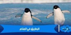 البطريق في المنام