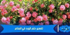تفسير حلم الورد في المنام لابن شاهين
