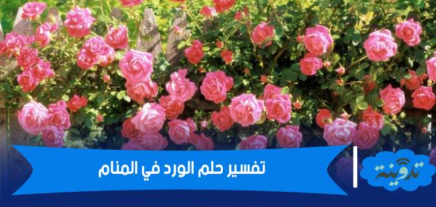 الورد في المنام